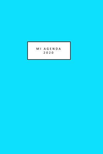 mi agenda 2020: linda agenda 2020 para colorear mientras te mantienes organizada hermosas ilustraciones de gato desde 1 de enero al 31 de diciembre ... tamaño 6 in x 9 in( en español) 206 hojas