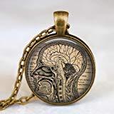Collar anatómico del cerebro, colgante de anatomía del cerebro humano, collar de regalo...