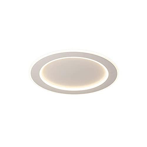 LPFWSK Luz de techo redonda blanca de montaje en blanco, luces de decoración interior delgada (3000k / 4500k / 6000k), accesorios de iluminación de estilo simple y moderno, adecuados para librerías, c
