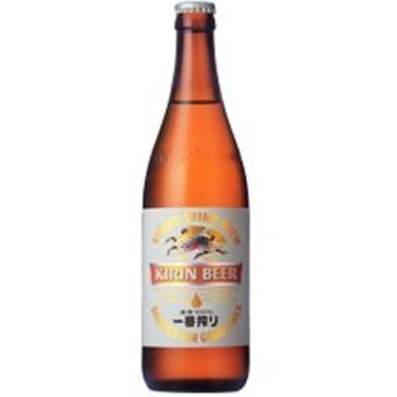 スタウト誠意教育者一番搾り 中瓶 500ml /キリン(6ケース)