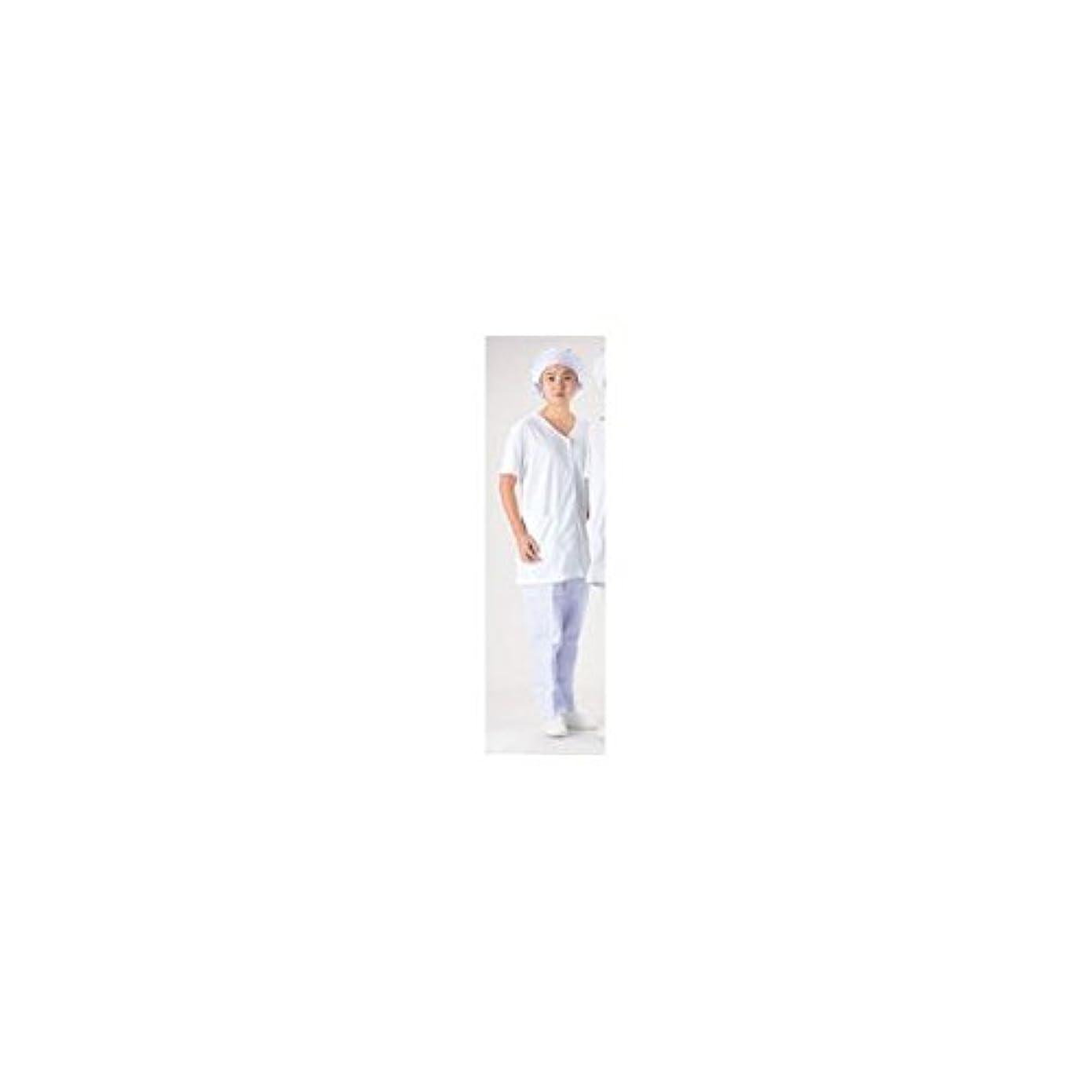 吹雪レタス救いテクノファインコート 女子襟無し半袖白衣 NR-449 LL/62-6635-79