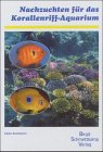Nachzuchten für das Korallenriff-Aquarium