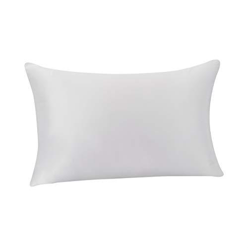 Amazon Basics - Funda de almohada de seda de morera 100%, ideal para el cabello y la piel, cierre de cremallera, doble cara, 19momme, gris claro, 50x75cm, 1unidad