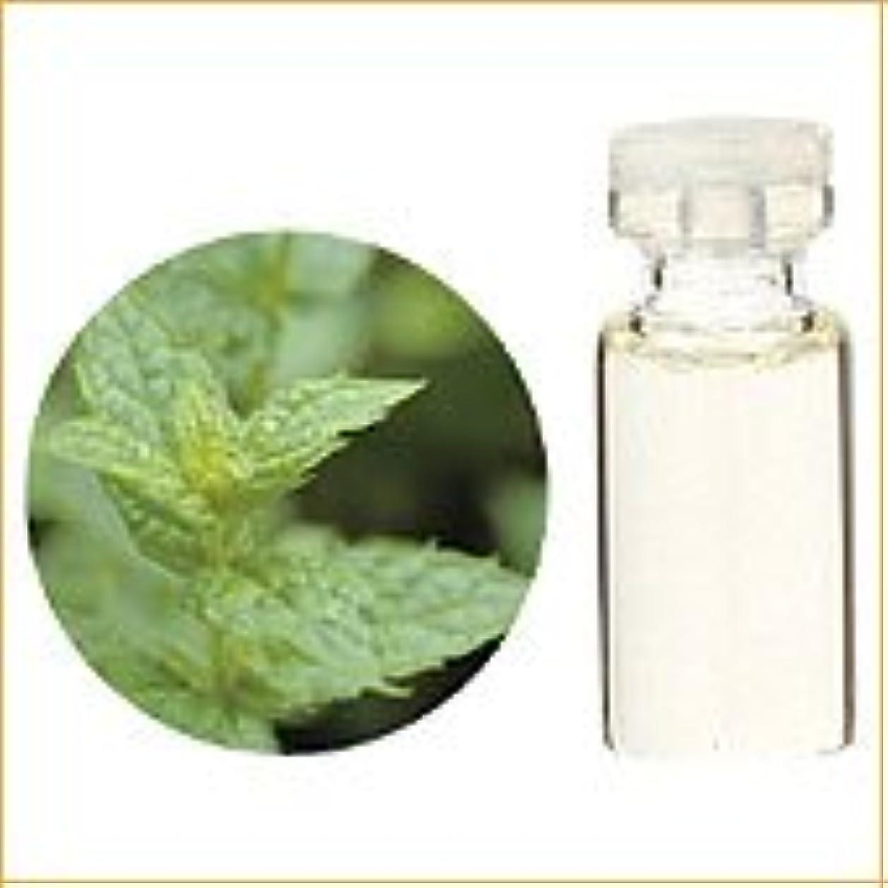 特異な肌寒い遷移生活の木 アロマオイル スペアミント 精油 10ml (Tree of Life Essential Oil/エッセンシャルオイル)