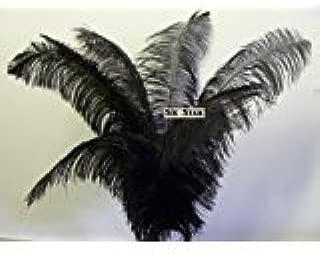 Special Wholesale Bulk Ostrich- Black 50 Deluxe Ostrich Plumes-14