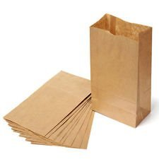 lunch sacks Brown Paper Lunch Bags, Self Standing Durable Lunch Sacks, 100pc Count Standard Size