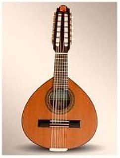 B-3C: Amazon.es: Instrumentos musicales