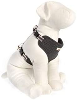 ED Ellen DeGeneres Grey Comfort Dog Harness~LARGE~