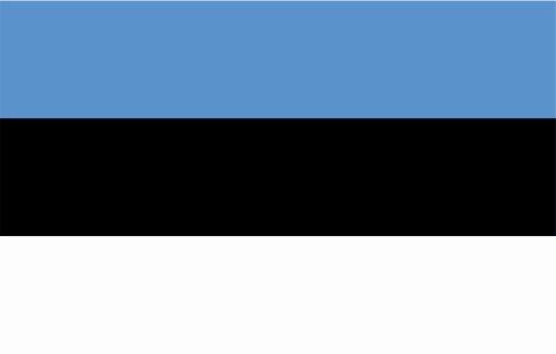 Kiwistar Autoaufkleber Sticker Fahne Flagge Aufkleber 10cm Estland laminiert sehr Lange Haltbar