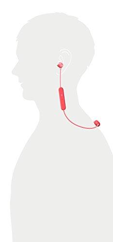 Sony WI-C300 Kabelloser In-Ohr Kopfhörer (Neckband Design, Bluetooth, NFC, Headset mit Mikrofon für Telefon & PC/Laptop, bis zu 8 Stunden Akkulaufzeit, Voice Assistant) rot