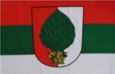 Stadt Augsburg Fahne Bayern Grösse 90 x 60cm Flagge