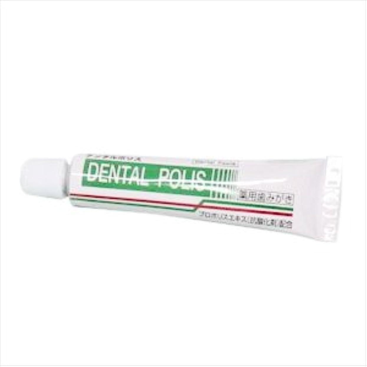 はさみ壁紙わずかな医薬部外品 デンタルポリスDX(8g) お試し用