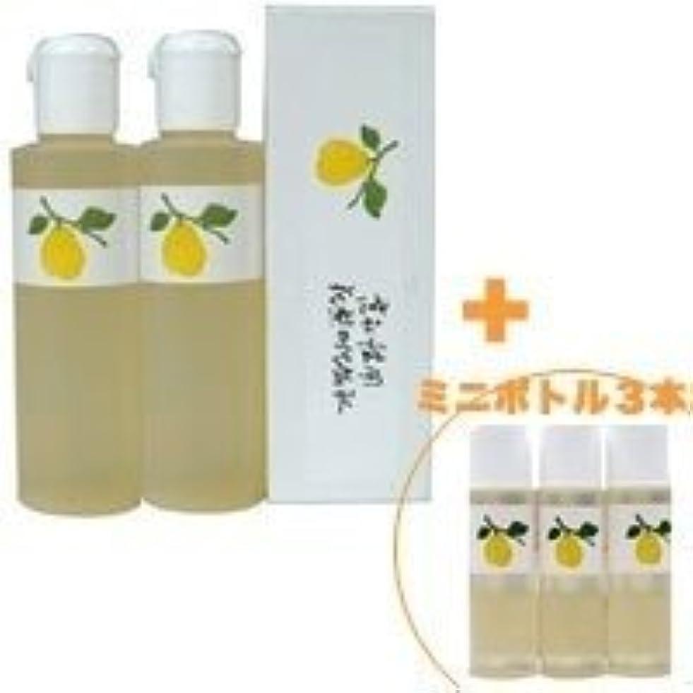 洞察力シャックルバブル花梨の化粧水 200ml 2本&ミニボトル 3本 美容液 栄養クリームのいらないお肌へ 保湿と乾燥対策に