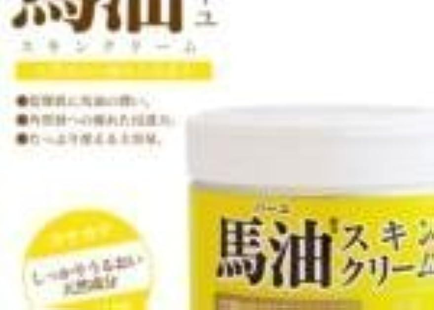 イブニングビジター病弱【まとめ買い】ロッシモイストエイド 馬油スキンクリーム【6個入り】