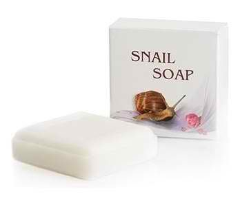 Snail Soap Bar Made from Snail Regenerative Secretion Filtrate - 30 grms