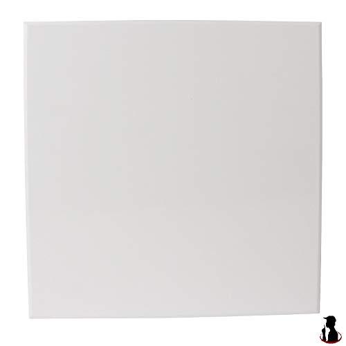 MKK Ventilateur de Salle de Bain Ventilateur de Plafond Ø 100 mm Roulements à Billes Silencieux 4,4 W Couverture Standard sans clapet Anti-Retour