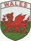 Wales Flagge Walisischer Drache Shield Form internen Fenster Aufkleber Aufkleber