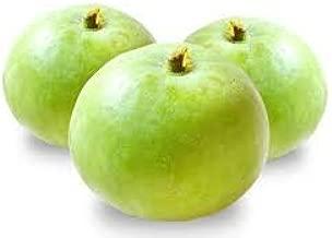 Kushuworld Apple gourd - Tinda Vegetable Seeds in kitchen garden pack
