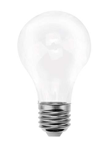 Glorex 6 1210 902 - Glühbirne aus Kunststoff, zum Öffnen mit Drehverschluss, ideal zum Basteln, Verzieren und Dekorieren, Höhe ca. 11 cm