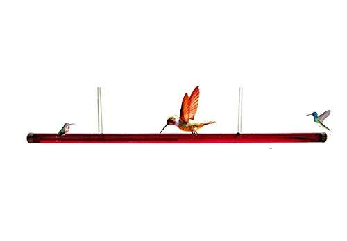 HAVAJ Anna's Best Kolibri-Futterstation mit Loch, für Vögel, durchsichtiges Rohr, einfach zu bedienen, für den Außenbereich, Garten, Heimdekoration
