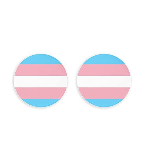 Imanes de nevera con formato de bandera de orgullo transgénero para adultos, imanes de nevera de 2 piezas, imanes de nevera