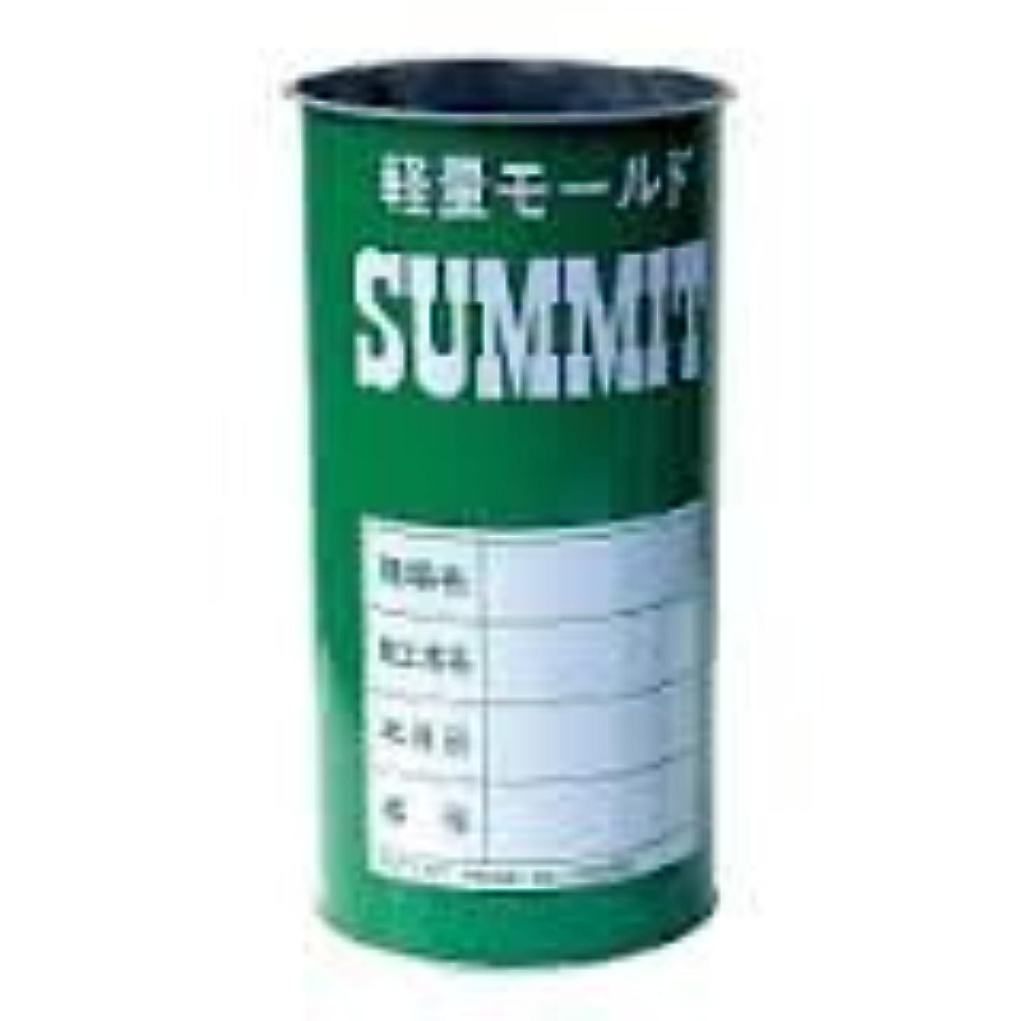 経営者頭痛セットアップサミットモールド φ5×10 60本入り サミット缶