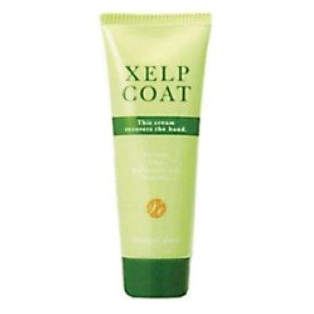 重要な役割を果たす、中心的な手段となるペスト経度ケイルコート 80g XELPCOAT 美容師さんのためのハンドクリーム