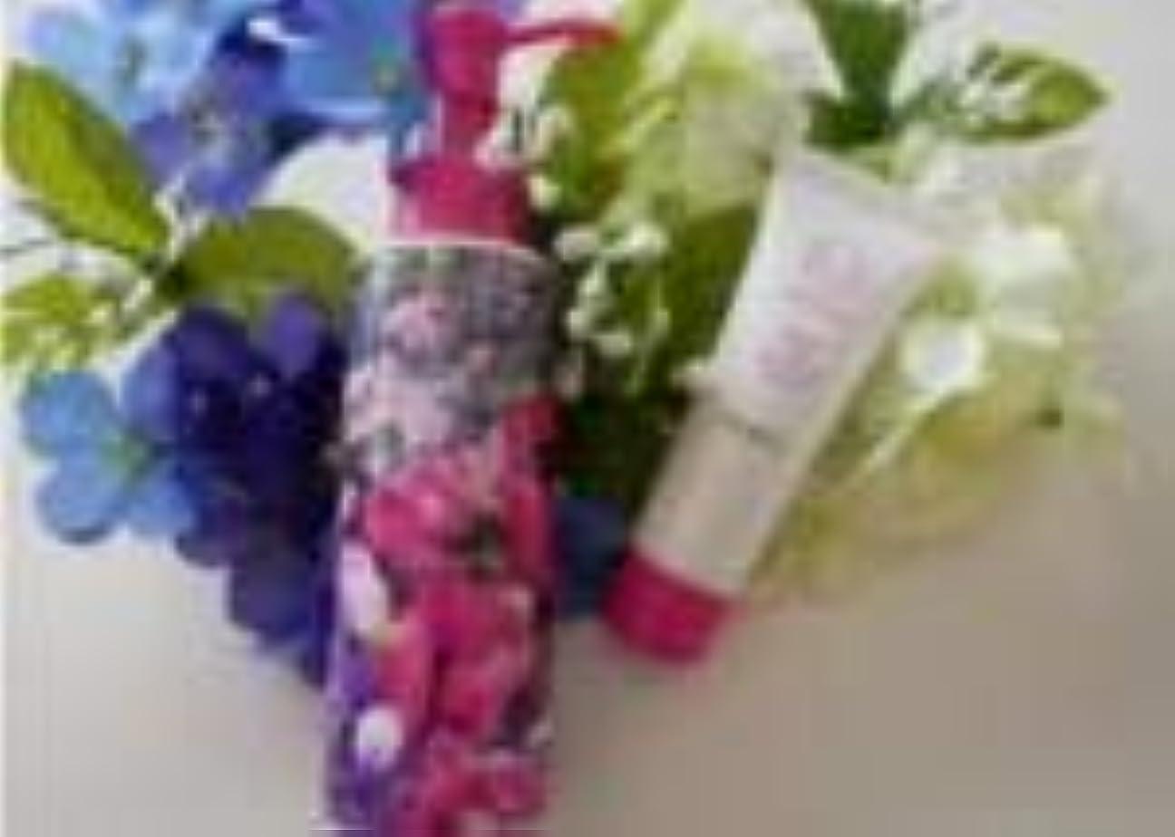 シーズン韻洗剤ファンケル マイルドクレンジングオイル&洗顔クリーム ミニ