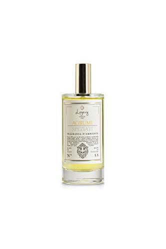 LOGEVY - Parfumeur pour environnements Eco-Spray 100 ML pour Le Bien-être de la Personne et de la Maison - Agrumes épicés