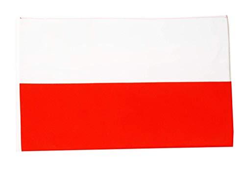 FlagSuperstore© Bootsflagge Polen, 45,7 x 30,5 cm – Baumhäuser, Wohnwagen – Ärmel 45 cm x 30 cm – Land
