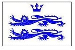 Flag Co 5Ft X 3Ft Berkshire Berks English County Material