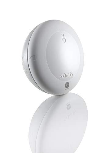 Somfy 2401220 - Thermis Wirefree io | Außentemperatursensor | TaHoma-kompatibel | IP 34