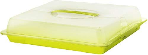Rotho John Partybutler mit Haube und Tragegriff, Kunststoff (PP) BPA-frei, grün/transparent, (47,5 x 39,0 x 9,8 cm)