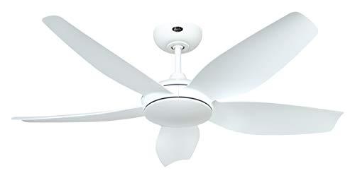 CasaFan 9669511681 WE-WE - Ventilador de techo con aspas (9669511681)