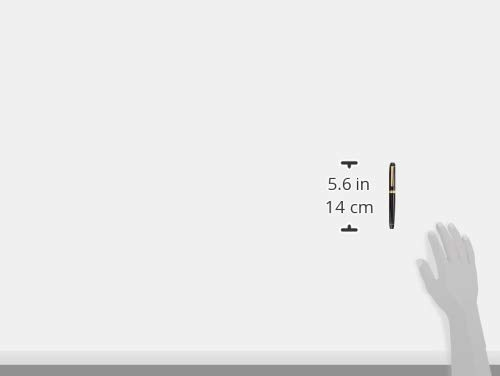 プラチナ万年筆万年筆センチュリーブラックインブラック細軟PNB-13000#1-0