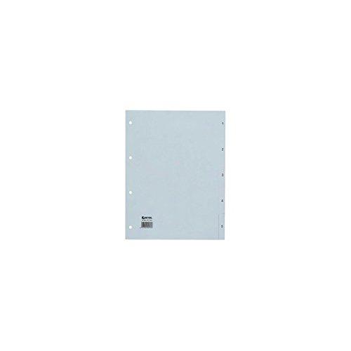 Rexel Zahlenregister aus PP Folie für A4, 226 x 297 mm, 15 Blatt, 1 Stück, grau