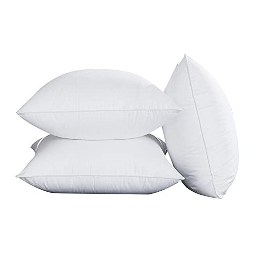 BeAUZQ Inserto de Almohadas de Tiro (Paquete de 1, Blanco) - Almohadas de Cama y sofá - Almohadas Decorativas de Interior,A2,30 * 50CM