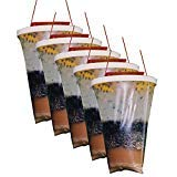 Flies Be Gone Fly Trap - Disposable Non Toxic Fly Catcher -MADE IN USA - Natural Bait Trap For Patios, Ranches, Outdoor Environments - Easy To Use Outdoor Fly Trap, Keeps Flies From Coming Indoors (5-Pack)