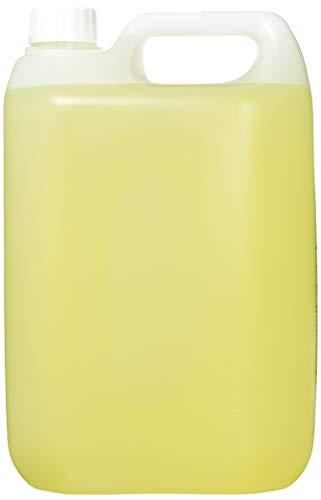 London Fine Soaps BYR235-5 feine Seifen Naranja Luxus Hand-Haar-Körper Waschen, 5l, 2Stück