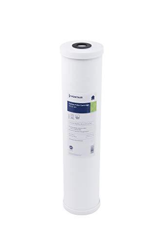 Pentek - 155247-43 RFC-20BB Carbon Filter (20' x 4.5'), 25 Micron