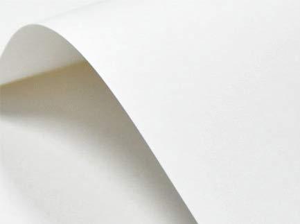 Netuno 20 x Weiß 246g Karton glatt DIN A4 210x297 mm, Elfenbeinkarton Ultraweiß, Bastel-Karton ideal für Visitenkarten, Einladungs-Karten, Menükarten, Zertifikate, Urkunden, Diplome
