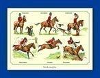 Pack Bryn Parry Note Cards - Paarden/Hunting Day (8 kaarten en enveloppen per pak) - De kaarten zijn leeg op de achterzijde voor u om op te schrijven