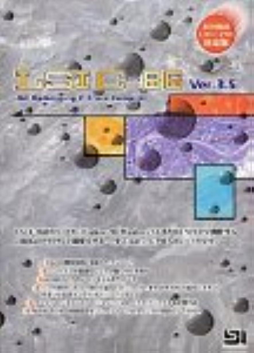 暴徒一生引き潮LSI C-86 Ver3.5 (UNIXシステムパック) 基本パッケージ