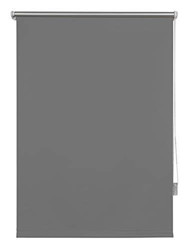 Thermo-Rollo ohne Bohren Verdunkelungsrollo Sichtschutz Seitenzugrollo Fenster innen 65x160 cm Grau