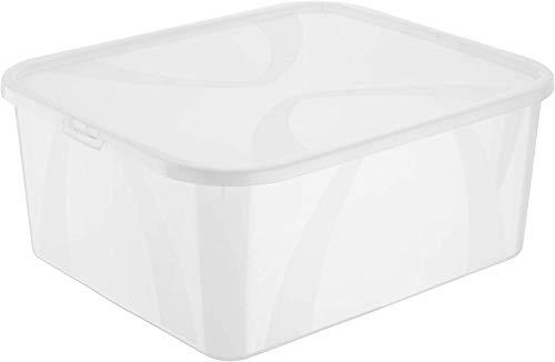 Rotho Arco Aufbewahrungsbox 19l mit Deckel, Kunststoff (PP) BPA-frei, transparent, 19l (42,0 x 35,1 x 17,2 cm)