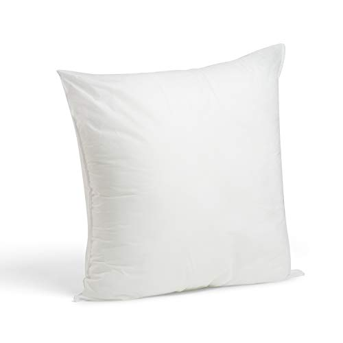 Foamily Premium Hypoallergenic Throw Pillow for Couch or Bed Decorative Insert Square, 22 x 22 - Made in USA