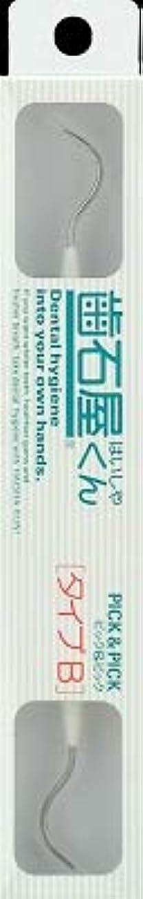 病的スワップレクリエーション【まとめ買い】歯石屋くん ピック&ピックタイプB ×3個