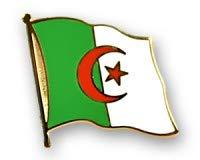 Algerien Flaggen Pin Fahnen Pin Flaggenpin
