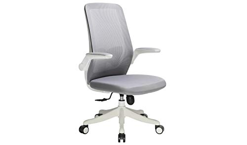 WOHOMO Home Office Task Chair Ergonomic Swivel Desk Chair with Flip-up Arms, Butterfly Lumbar Support Adjustable Height Computer Chair, Grey and White