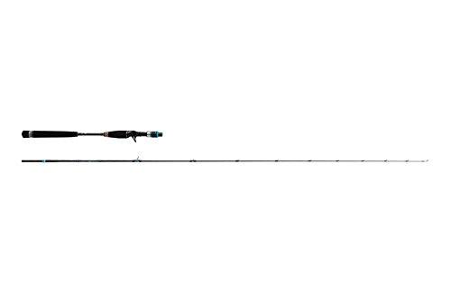 アブガルシア(Abu Garcia) ライトジギング ロッド ベイト ソルティーステージ KR-X SXLC-632-120-KR